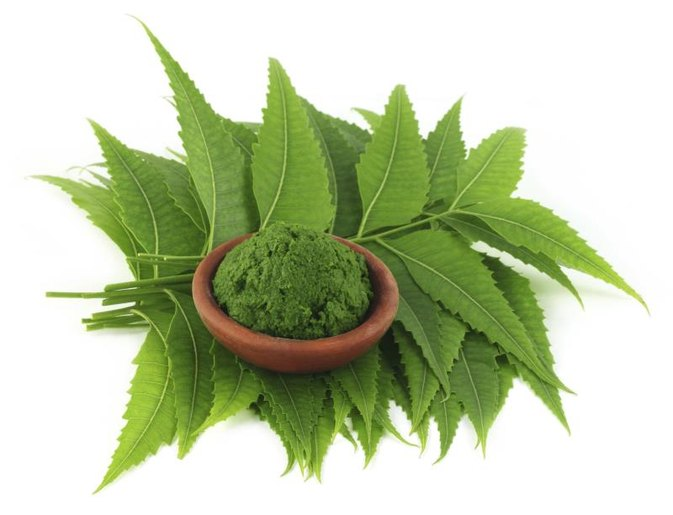 Uses of Neem Powder
