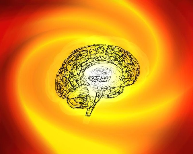 The Effects of Dopamine on the Brain