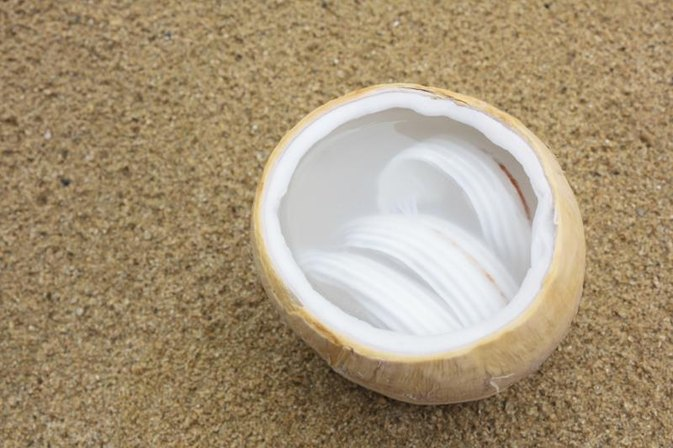 What Are the Benefits of Young Coconut Meat?