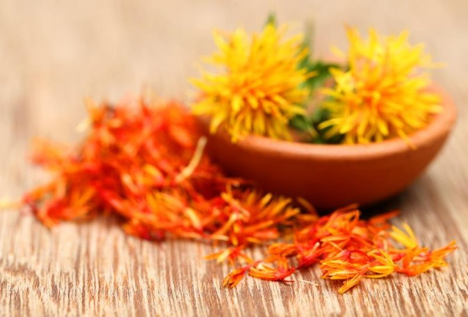 the pros & cons of safflower oil | livestrong, Skeleton
