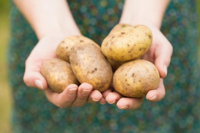 Can You Eat Green Skins on Potatoes?