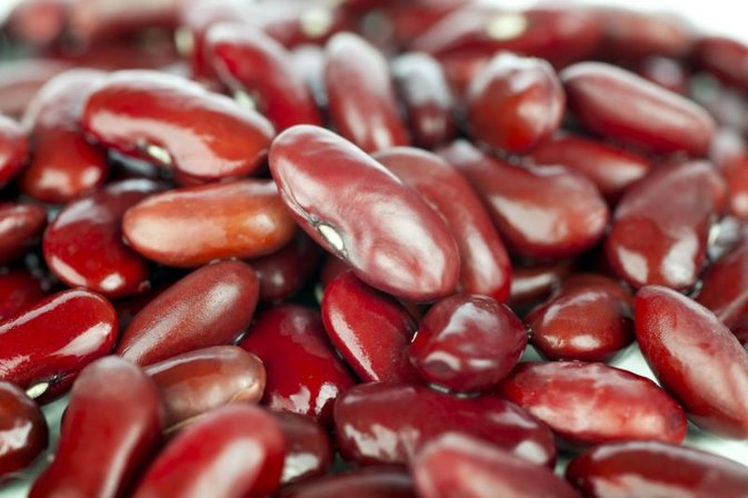 Are Red Kidney Beans Toxic?