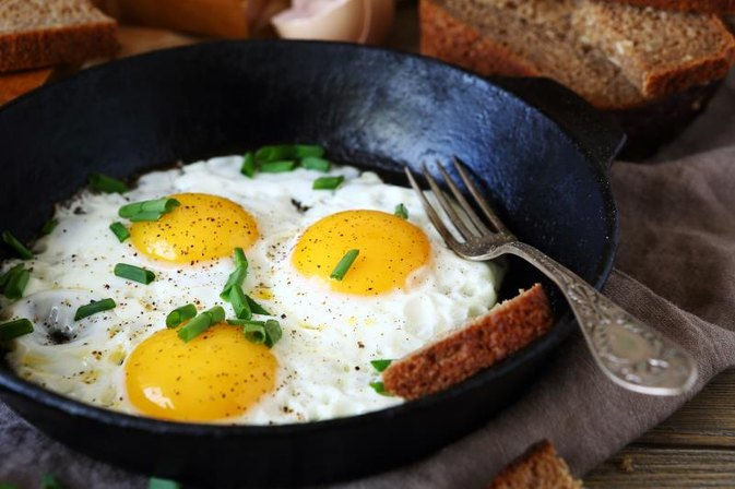 Free List of Fat Burning Protein Foods