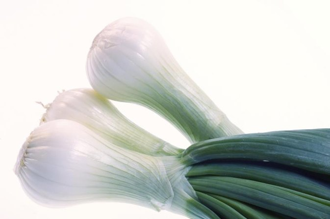 Does Fennel Contain Black Licorice?