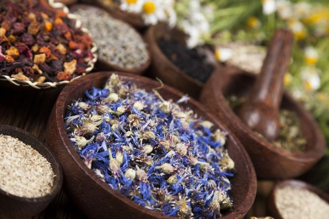 Holistic Remedies for the Gall Bladder