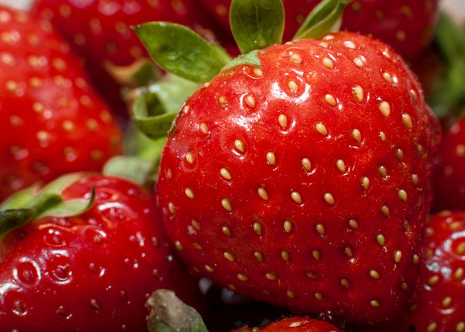 Can Strawberry Seeds Upset My Stomach?