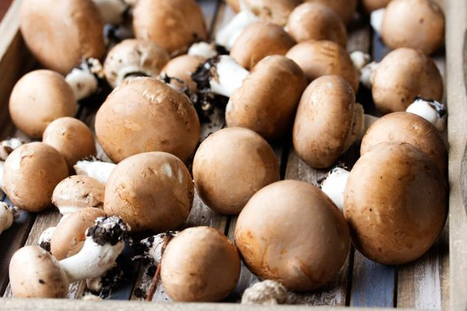 How to Cook Baby Portobello Mushrooms in an Oven