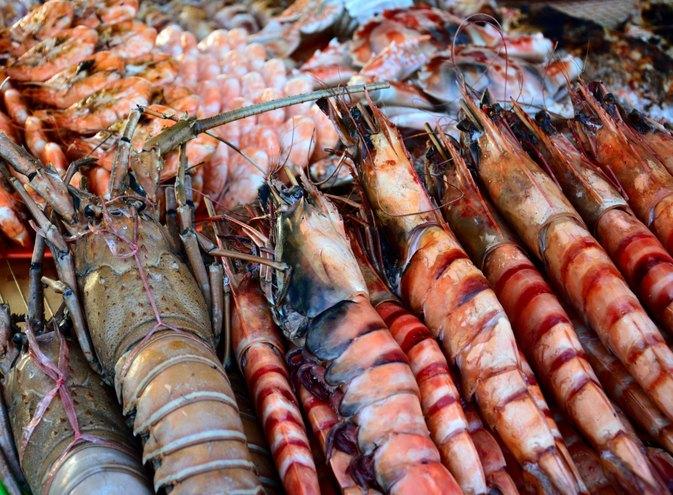 should nursing moms eat shellfish  livestrong
