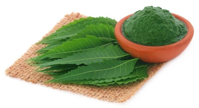 About Neem Leaves