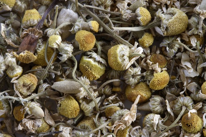Can Chamomile Tea Help With a Stuffy Nose & Cough?