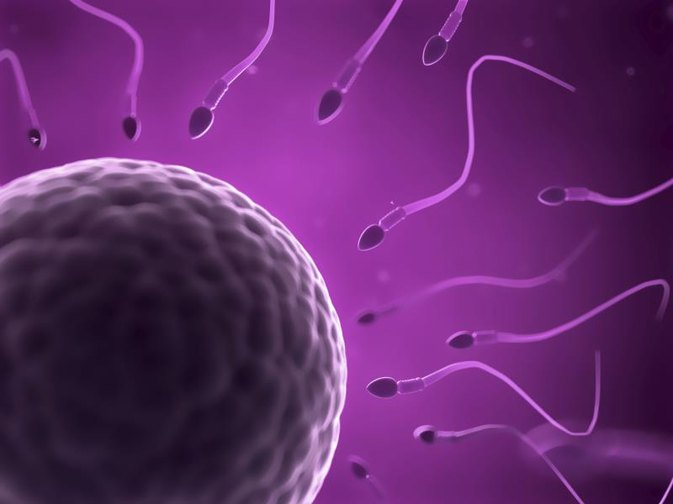 Draw? Increase sperm without pills
