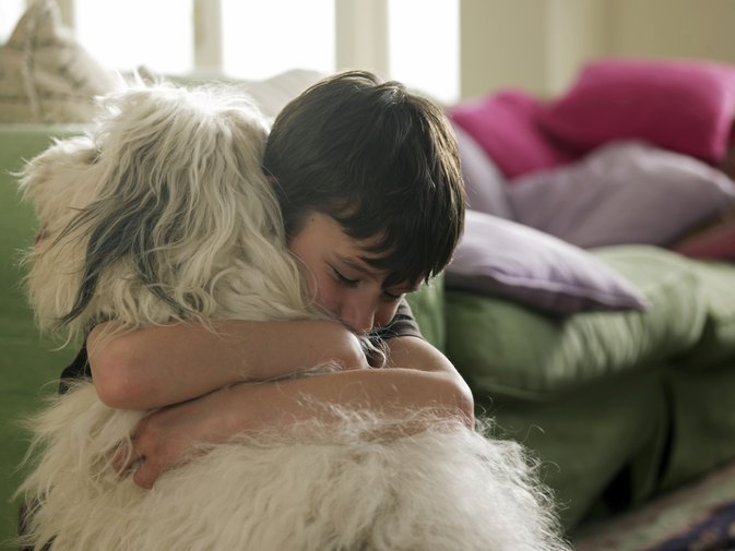 How to Stop Your Child From Teasing or Hurting the Dog