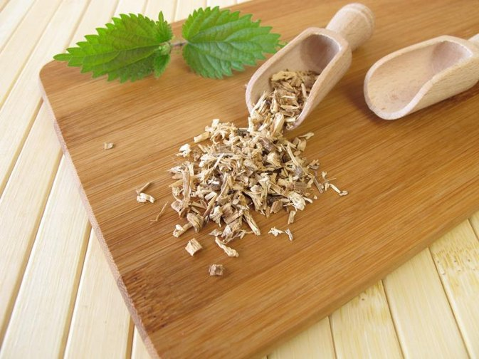 Nettle Root for Iron Deficiency