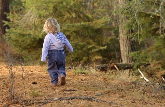How Can a Tick Affect a Toddler?