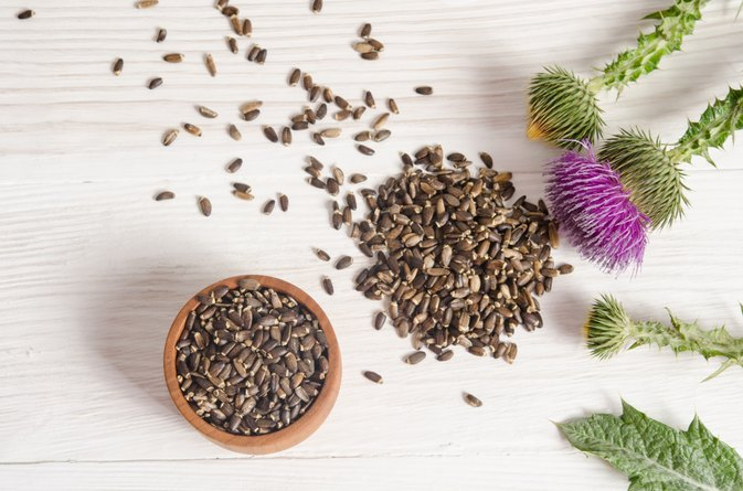 Can Milk Thistle Help Hair Loss?