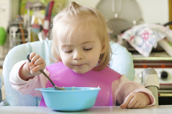 Meal Ideas for Picky Toddlers