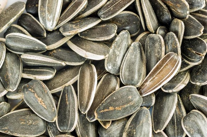 Bodybuilding and Sunflower Seeds