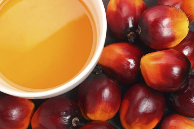 Can You Reduce Your Body Fat by 27 Percent Using Red Palm Oil?