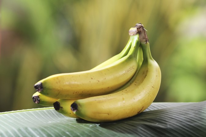 sodium and potassium relationship