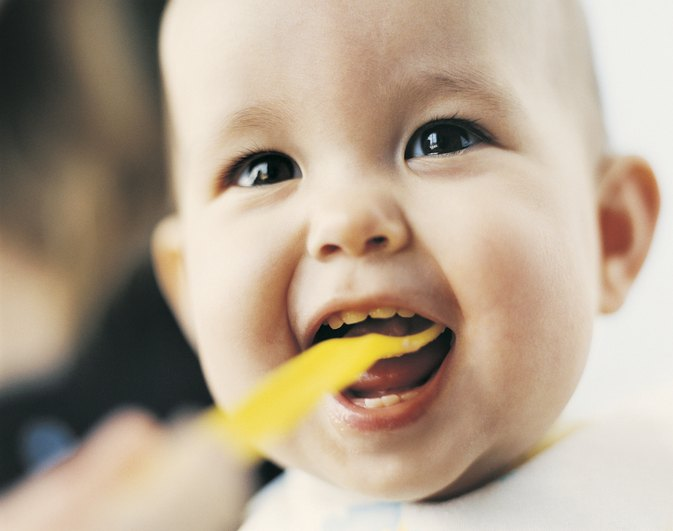 The Diet of a Six-Month-Old
