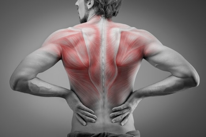 Thoracic Back Exercises to Get Rid of Pain