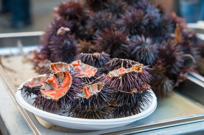 Nutritional Facts of a Sea Urchin