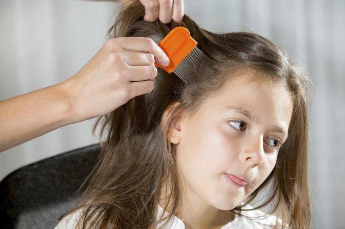 How to Use Olive Oil to Kill Head Lice
