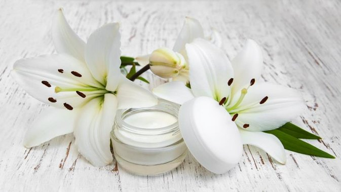 The Best Wrinkle Cream Products Worldwide