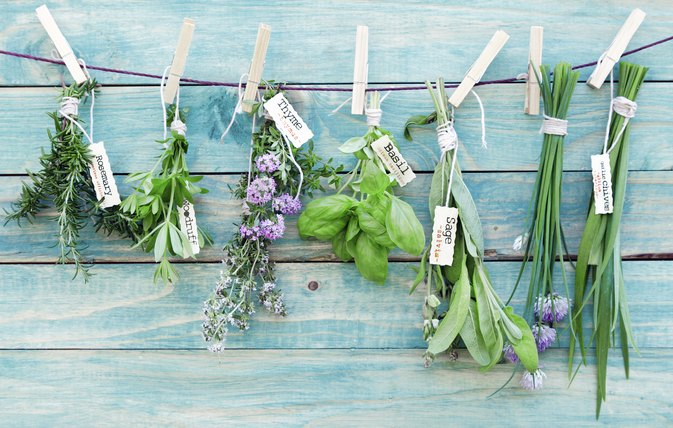 Herbs that Stimulate Growth Hormones
