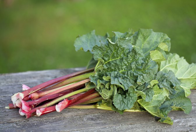 How to Grill Rhubarb