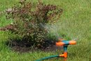 What Is Septic Tank Aeration?