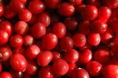 Dosage of Cranberry Extract for UTIs