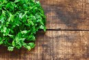 Parsley & Weight Loss