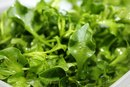 How to Cook Watercress