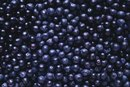 The Side Effects of the Blueberry Extract Supplement