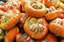 How to Cook a Turban Squash