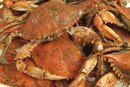 Symptoms of a Crab Allergy