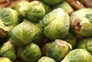 Do Brussels Sprouts Cause Bloating?