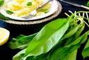 Nutritional Benefits of Ramps
