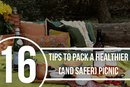 16 Tips to Pack a Healthier and Safer Picnic