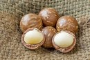 Are Macadamia Nuts Healthy?