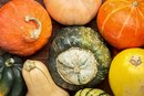 How to Bake Winter Squash in a Convection Oven