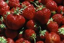 Berries in the Candida Diet