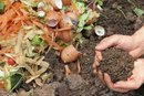 Pros & Cons of Composting