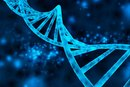Why Humans Need Nucleic Acids