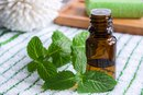 Are Mint Oil & Peppermint Oil the Same?
