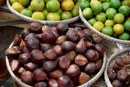 The Glycemic Index of Figs