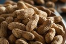 Can Nuts Cause Indigestion?