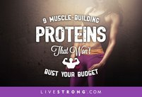 9 Muscle-Building Proteins That Won't Bu…
