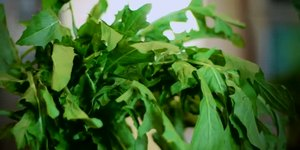 The Best Green, Leafy Vegetables to Increase …